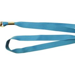 Light blue lanyard